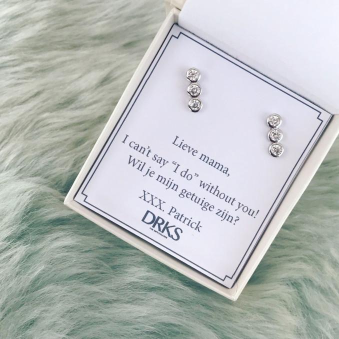 Glinsterende bar oorbellen zilver in sieradendoosje van DRKS