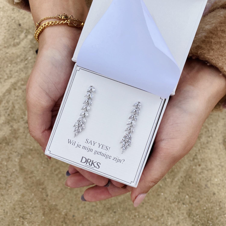 Zilveren lange sparkle oorbellen in sieradendoosje